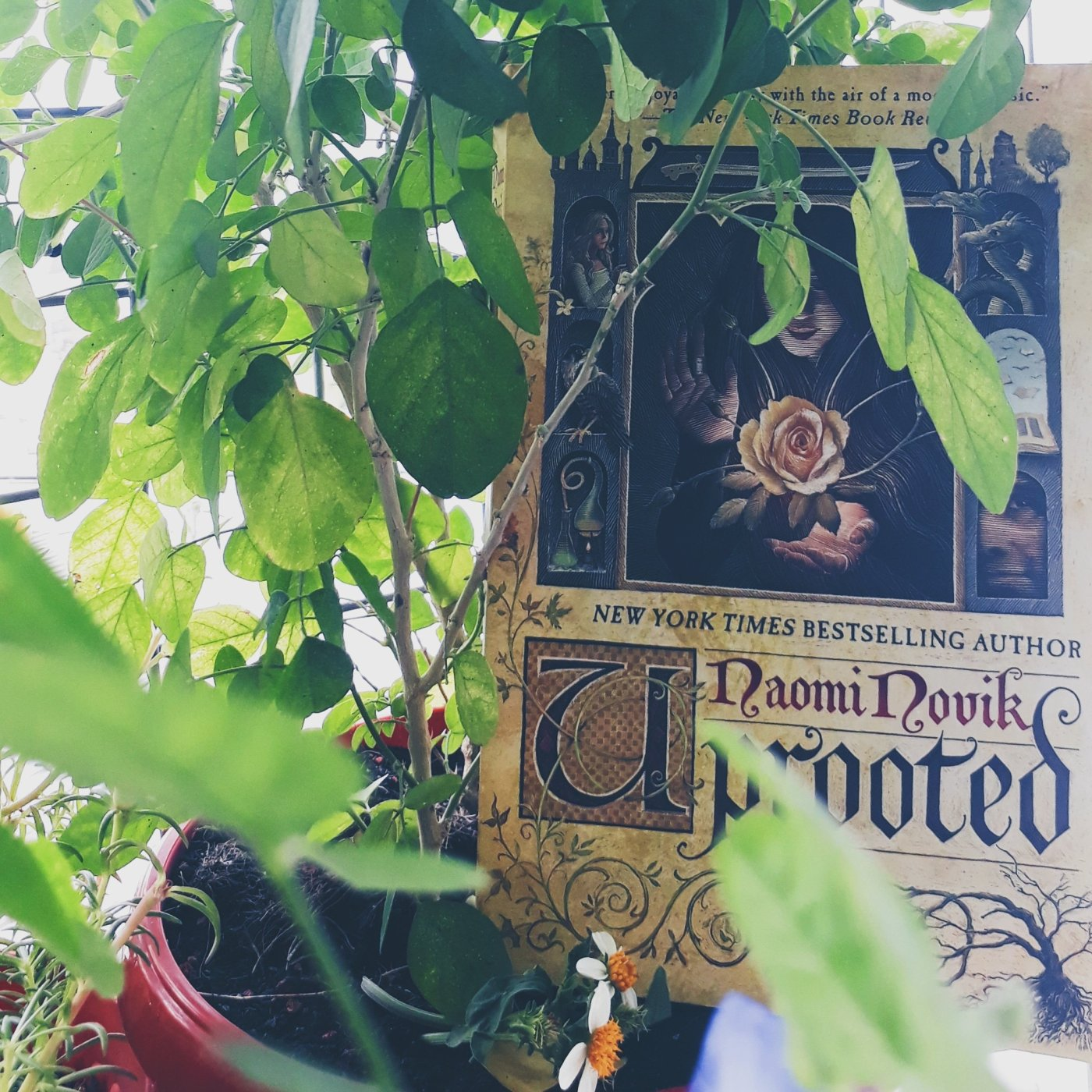 Uprooted  by Naomi Novik (Review Copy) – Tale of a Bookworm